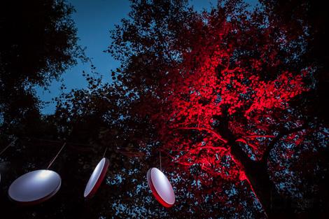 Parkfunkeln im Stadtpark Norderstedt - Foto von Arne Vollstedt
